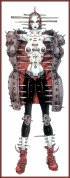 Nirasawa_Yasushi-Chameleon116-Iron_Meiden-D50