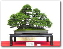 2001-27kai-sakufu-zuisyou