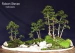 erethis-microcarpa-rsteven