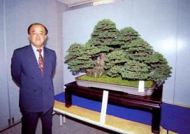 kindai-bonsai-2001