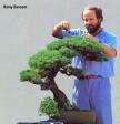 Remy Sansom bonsai