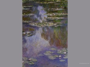 water_lillies01