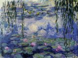 water_lillies03