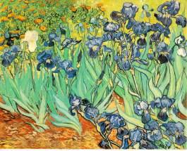 gogh.irises