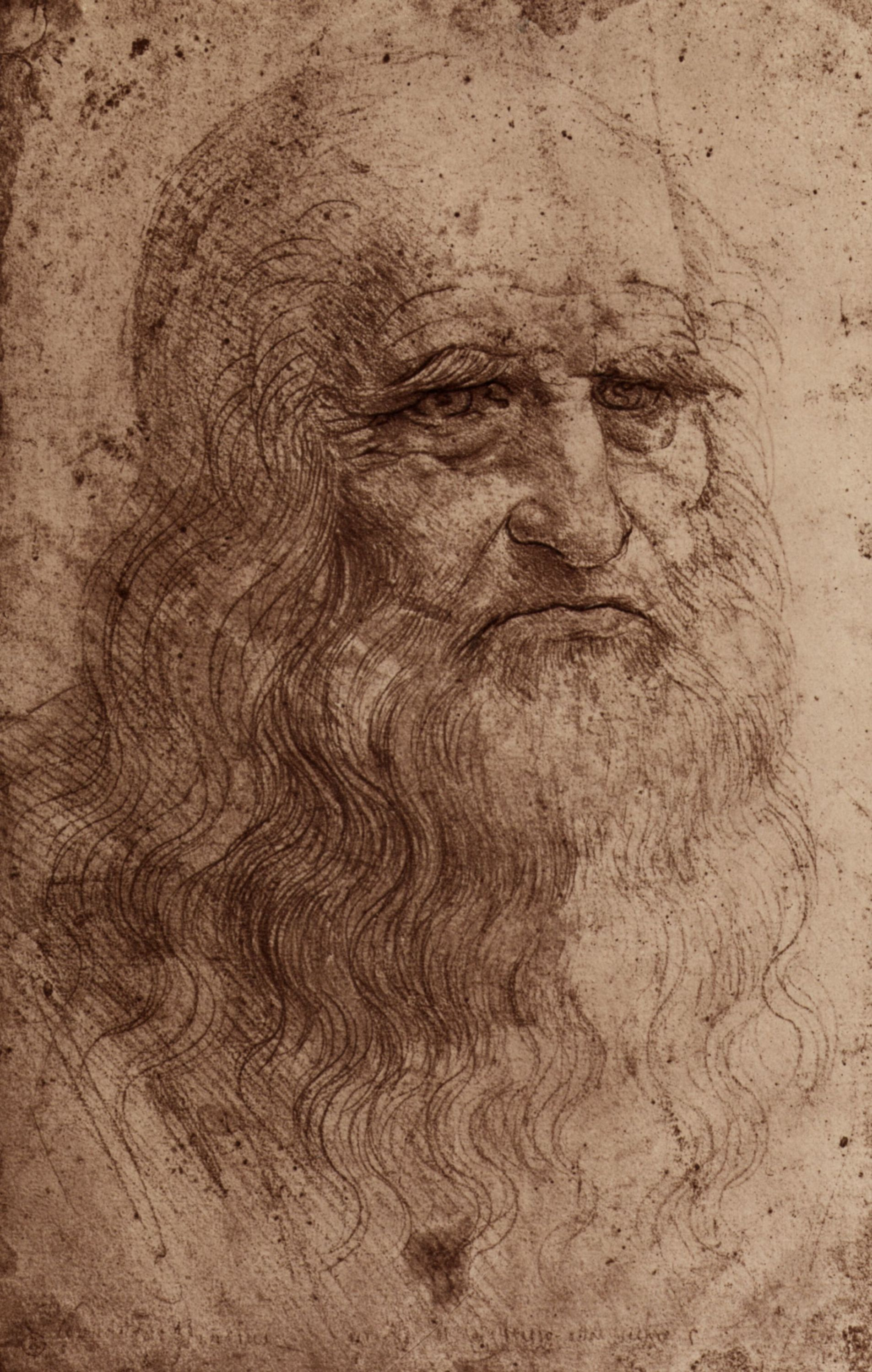 rennasaince leonardo de vinci Leonardo da vinci (1452-1519): biography of italian renaissance painter, best-known for mona lisa portrait, last supper fresco, vitruvian man drawing.