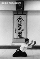 Cópia de seigo_yamaguchi