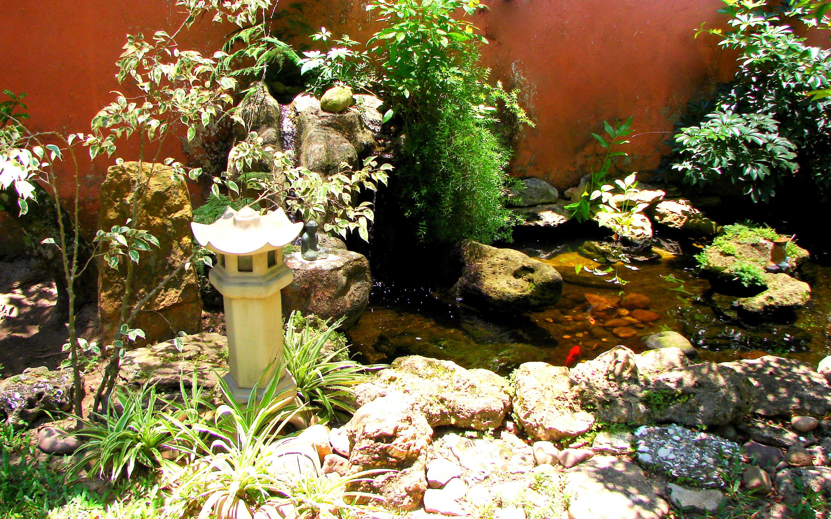 mini jardim japones fotosConstruindo um lago de carpas