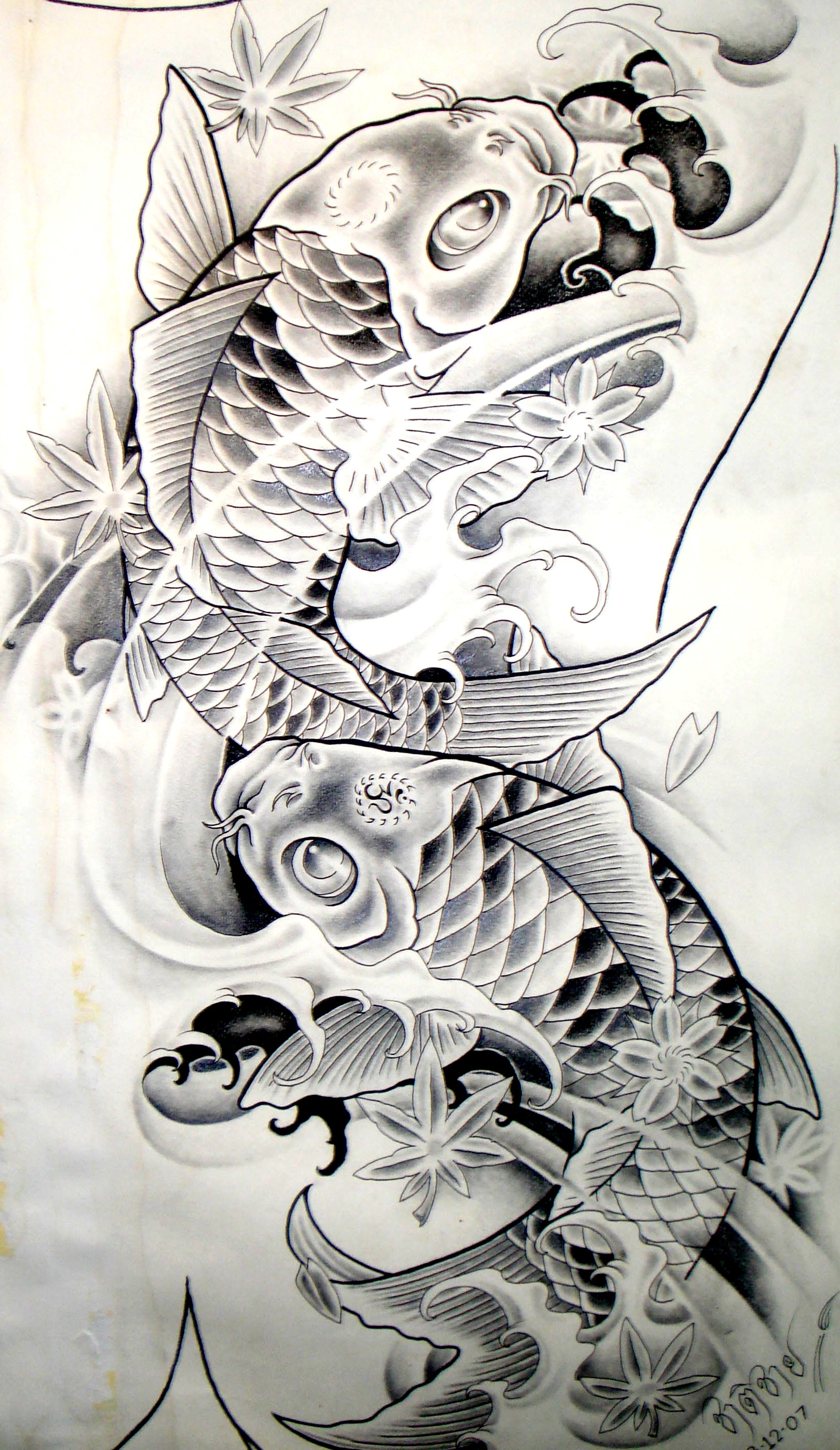 Desenhos carpas koi carp sketch tattoo tattooskid for Sick koi fish