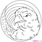 how-to-draw-an-american-eagle-step-7