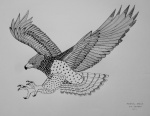 martial eagle illustration