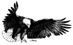 WOW_Eagle_Logo_Jan09