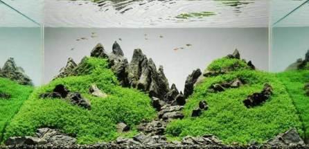 800px-Peter_Kirwan_Mountainscape1