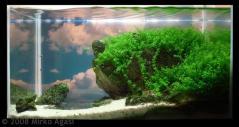 best-aquascape