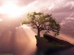 3d-digital-tree