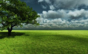 3D-Tree-3d-tree-nature-1920x1200