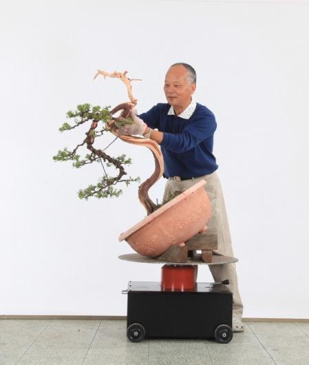 Liu,Tung-Yuen-2