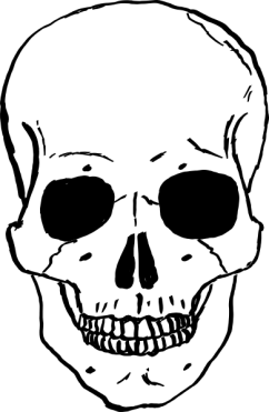 12362692831730357821narrowhouse_skull.svg.hi