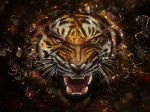 Angry-Tiger-tigers-31737545-1920-1440