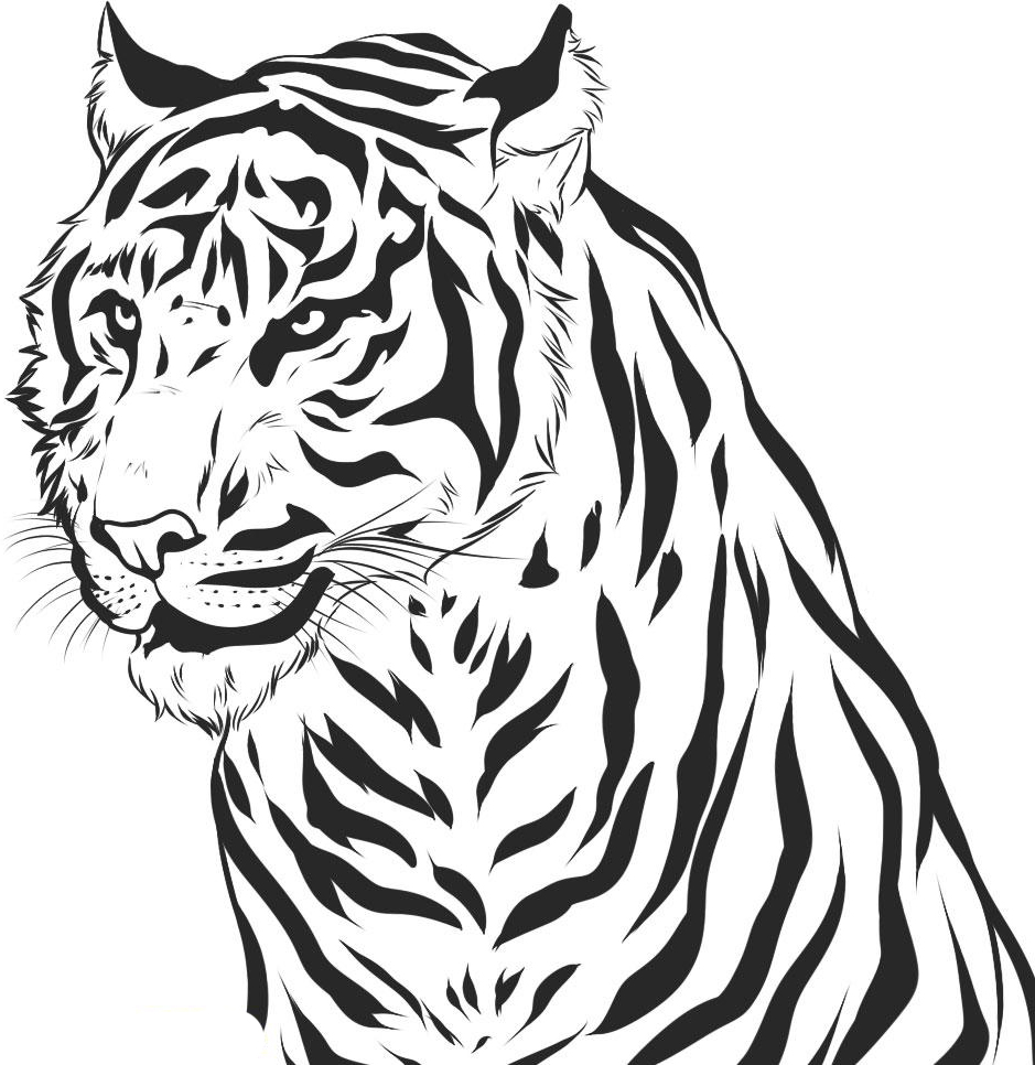 Free To Draw Tiger Coloring Pages