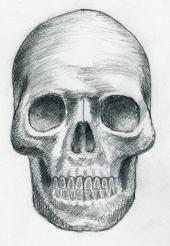 how-to-draw-skulls04