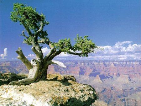 paesaggi-landscapes141