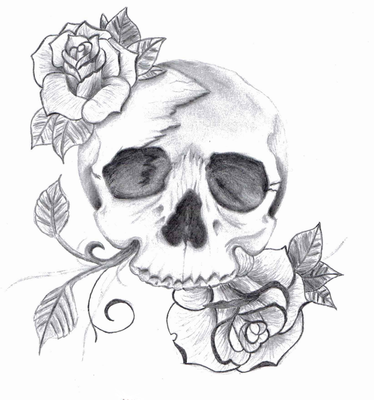 100 desenhos de caveira » skull 2
