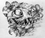 skull-eyeball-tattoo-drawing