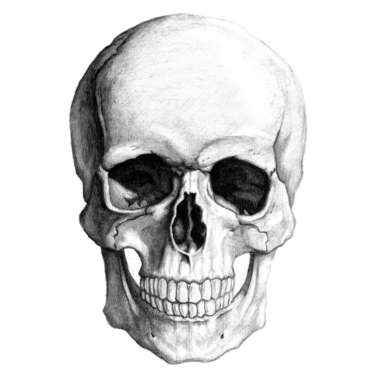 100 desenhos de caveira » skullpencil_large