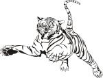 tiger-coloring