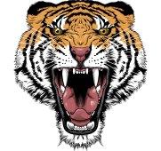 Tigers_tattoo_136