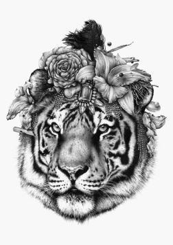 ugo-gattoni-tete-tigre