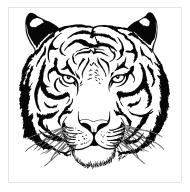 white_tiger_tattoo_by_diabla69-d2y7yah