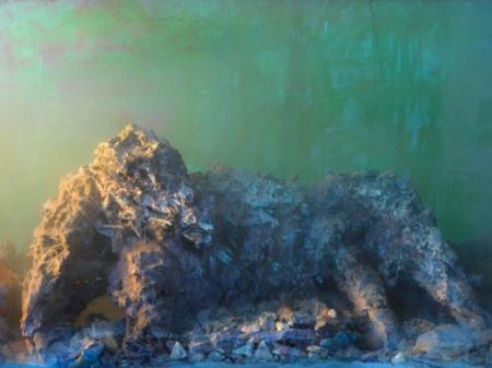 53014-dog-14h-24x31-20103