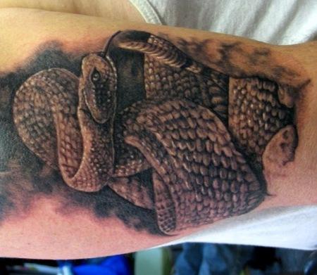 3.bp.blogspot.com*-_nflXAHX_jY*T-v9eDcHp3I*AAAAAAAAAxc*zxbRQ24tdEs*s1600*3D Snakes Tattoo on Biceps and Triceps-05 tattoosphotogallery.blogspot.com