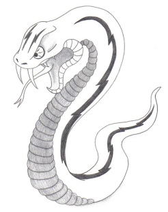 images.paraorkut.com*img*pics*images*s*snake_tattoo-12078