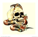 Img253555_Skull-and-Snake-for-shop
