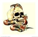 Img253555_Skull-and-Snake-for-shop