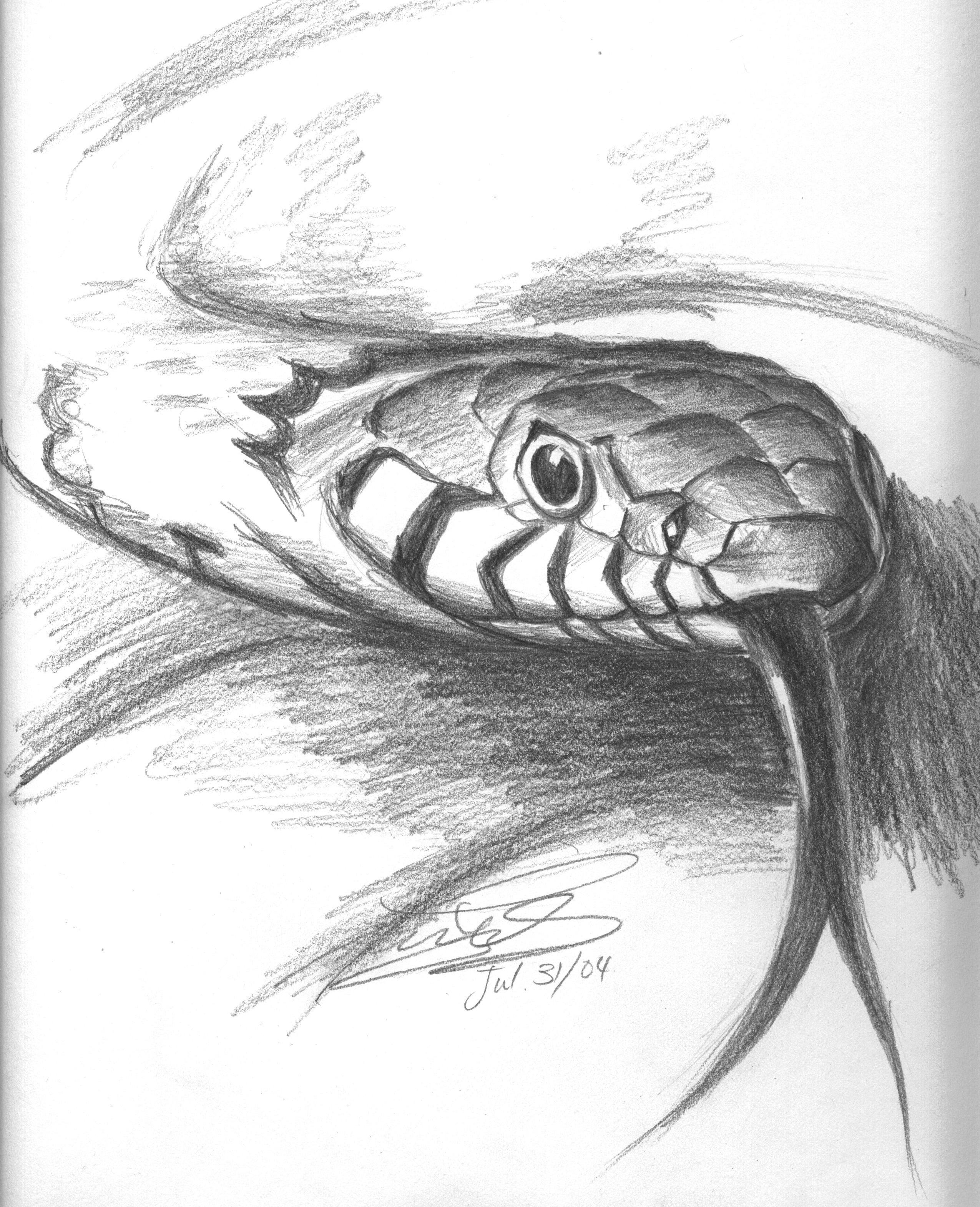 Крутые рисунки змей, рисовать