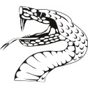 snake-viper-wall-art-sticker-31