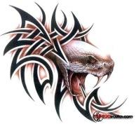 Snakes_tattoo_116