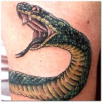 tattooadvices.com*Images*S*snake-tattoo-designs-pictures*Snake-Tattoo-Designs-Pictures-1