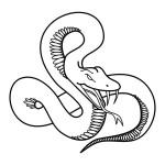 tattoodemon.com*flash*Snake*006-0009