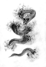 tattoodemon.com*flash*Snake*36483929_03512041