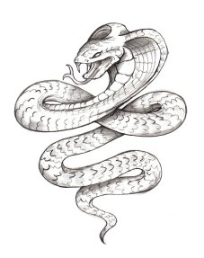 waktattoos.com*large*Snakes_tattoo_152