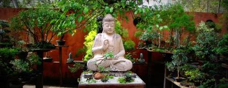 Buda wide 1